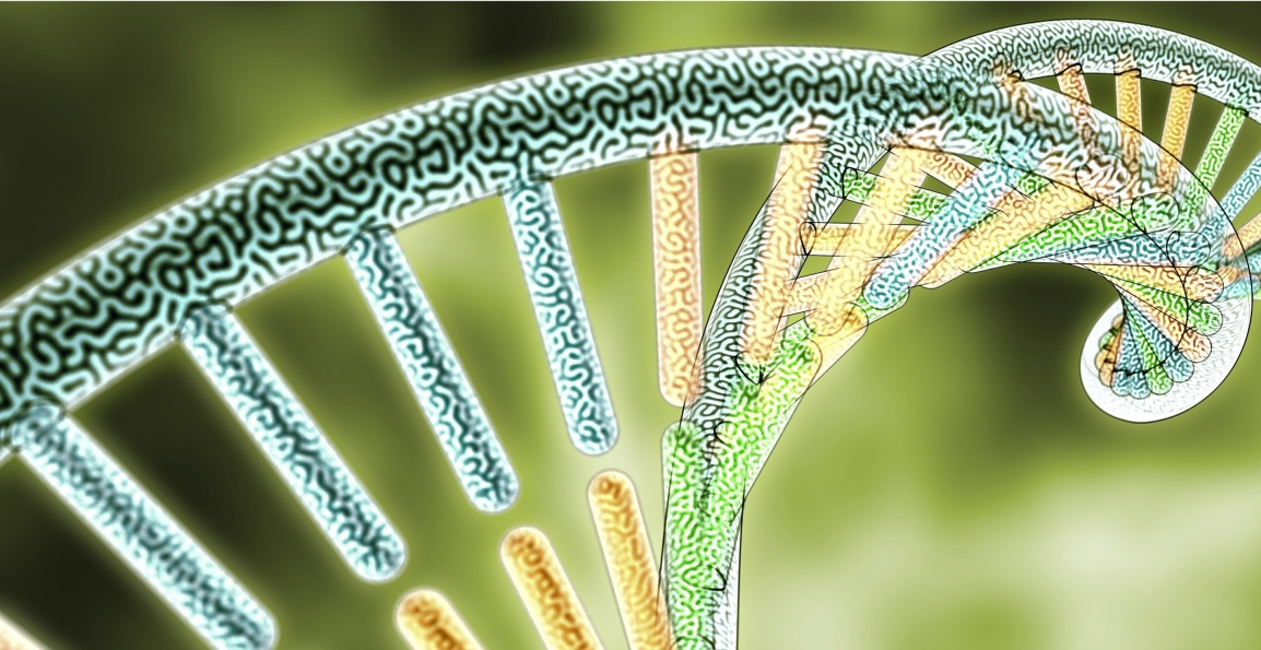 Genetic Engineering – The Human Quest forPerfection