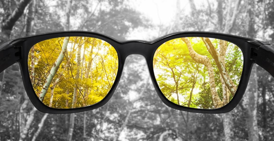 879b1e152e8b Enchroma Glasses – Seeing Color through a Different Lens. Color blindness  ...