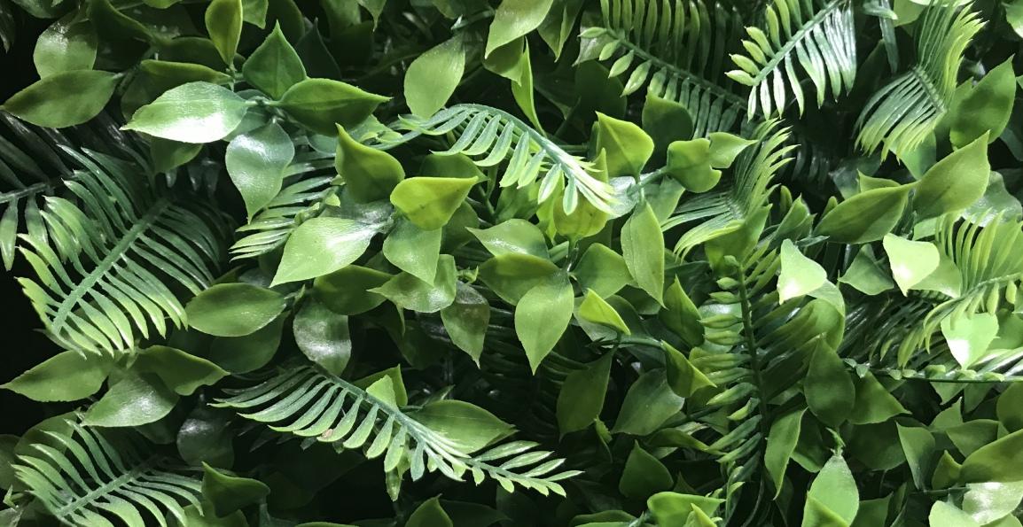 Fake Foliage