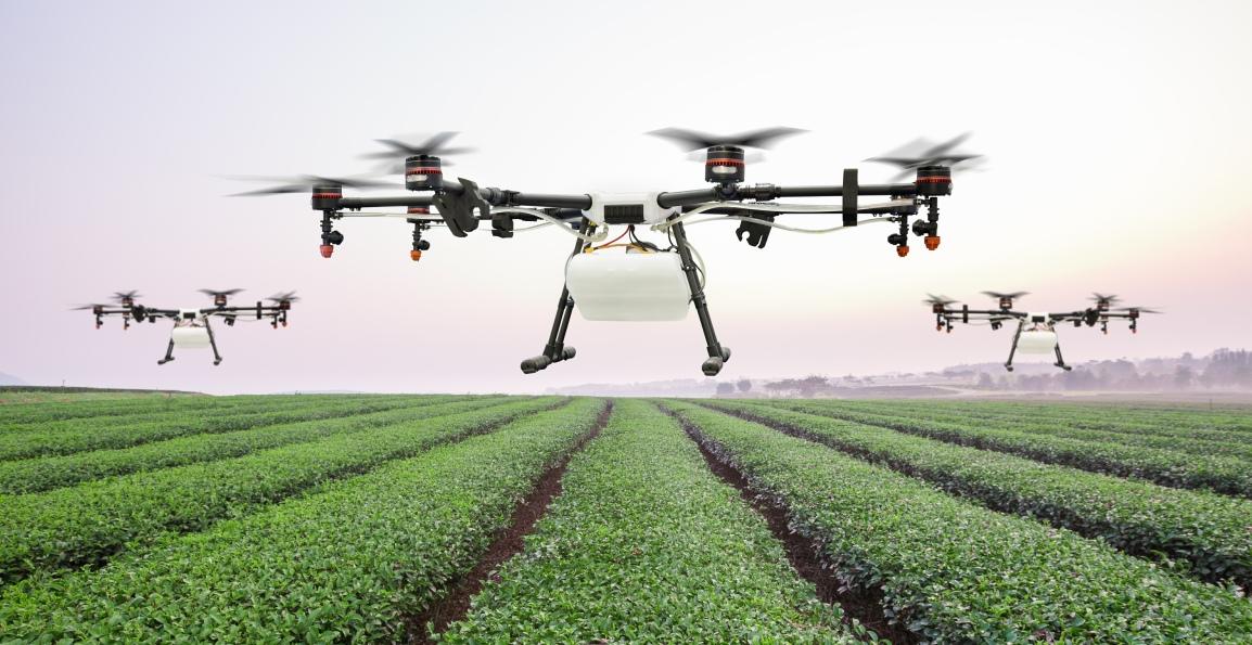 Florida Drones